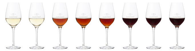 Sherry color overview. Glass of Lustau sherry